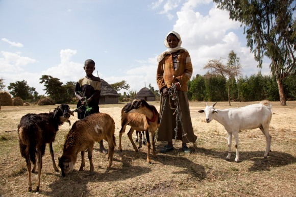 iDE UK - helping rural Ethiopian farmers out of poverty